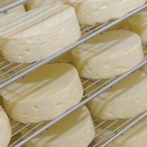 Camembert de l'ENIL de Saint-Lô Thère