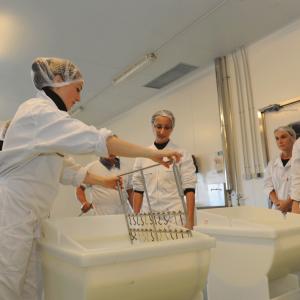 Atelier fromager à l'ENIL de Saint-Lô Thère