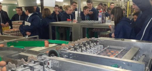 Visite d'un atelier de poules pondeuses par les Secondes Pro PA
