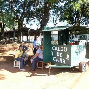 Caldo de cana - plantation de cannes à sucres